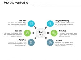 Project Marketing Ppt Powerpoint Presentation File Samples Cpb