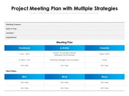 Project Meeting Plan With Multiple Strategies