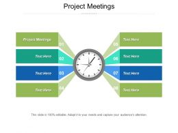 Project Meetings Ppt Powerpoint Presentation Infographics Styles Cpb