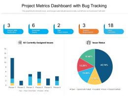 Project Metrics Dashboard With Bug Tracking