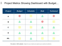 Project Metrics Showing Dashboard With Budget Schedule Risk