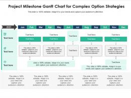 Project Milestone Gantt Chart For Complex Option Strategies