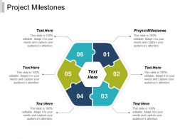 Project Milestones Ppt Powerpoint Presentation Infographic Template Information Cpb