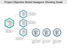 Project Objective Model Hexagons Showing Goals