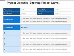 Project Objective Showing Project Name With Goal Statements