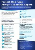 Project One Page Analysis Example Report Presentation Report Infographic PPT PDF Document