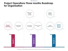 Project Operations Three Months Roadmap For Organization