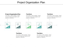 Project Organization Plan Ppt Powerpoint Presentation File Examples Cpb