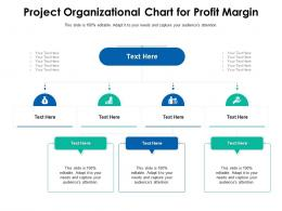 Project Organizational Chart For Profit Margin Infographic Template