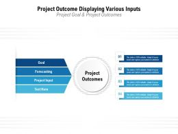 Project Outcome Displaying Various Inputs Project Goal And Project Outcomes