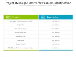 Project Oversight Matrix For Problem Identification