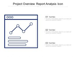 Project Overview Report Analysis Icon