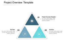 Project Overview Template Ppt Powerpoint Presentation Professional Format Cpb