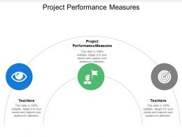 Project Performance Measures Ppt Powerpoint Presentation Icon Good Cpb