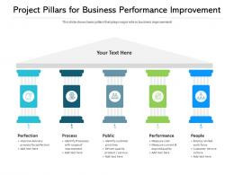 Project Pillars For Business Performance Improvement