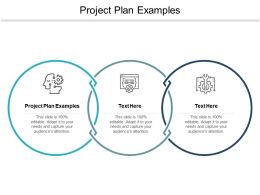 Project Plan Examples Ppt Powerpoint Presentation Ideas Graphics Cpb