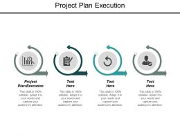 Project Plan Execution Ppt Powerpoint Presentation Outline Example Introduction Cpb