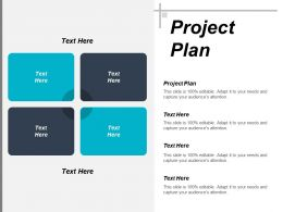 Project Plan Ppt Powerpoint Presentation Ideas Background Designs Cpb