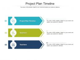 Project Plan Timeline Ppt Powerpoint Presentation Styles Demonstration Cpb
