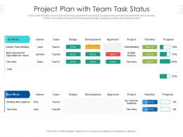 Project Plan With Team Task Status