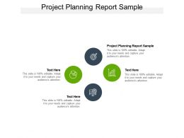 Project Planning Report Sample Ppt Powerpoint Presentation Summary Files Cpb