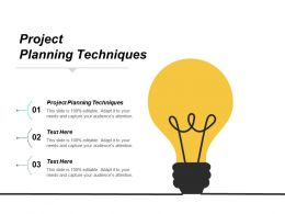 Project Planning Techniques Ppt Powerpoint Presentation Microsoft Cpb