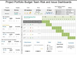 Project Portfolio Budget Team Risk And Issue Dashboards