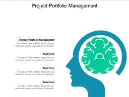 Project Portfolio Management Ppt Powerpoint Presentation Ideas Portrait Cpb