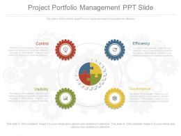 Project Portfolio Management Ppt Slide