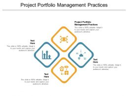 Project Portfolio Management Practices Ppt Powerpoint Presentation Layouts Cpb