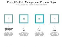 Project Portfolio Management Process Steps Ppt Powerpoint Presentation Show Ideas Cpb