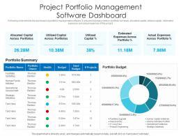 Project Portfolio Management Software Dashboard