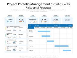Project Portfolio Management Statistics With Risks And Progress