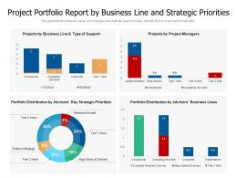 Project Portfolio Report By Business Line And Strategic Priorities