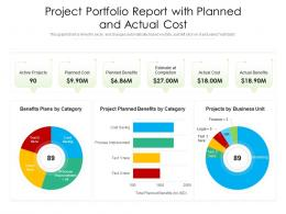Project Portfolio Report With Planned And Actual Cost