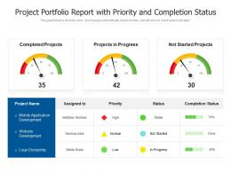 Project Portfolio Report With Priority And Completion Status