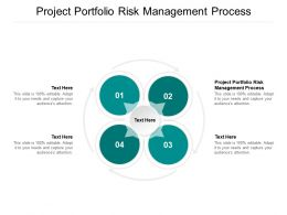 Project Portfolio Risk Management Process Ppt Powerpoint Presentation Summary Graphics Tutorials Cpb
