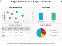 Project Portfolio Status Budget Dashboards