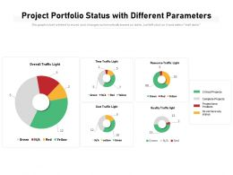 Project Portfolio Status With Different Parameters