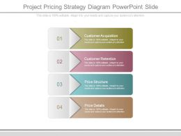 Project Pricing Strategy Diagram Powerpoint Slide