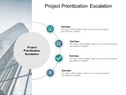 Project Prioritization Escalation Ppt Powerpoint Presentation Gallery Example Introduction Cpb