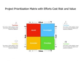 Project Prioritization Matrix With Efforts Cost Risk And Value