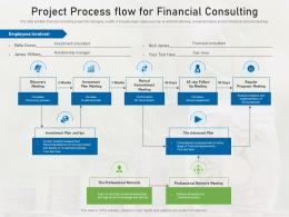 Project Process Flow For Financial Consulting
