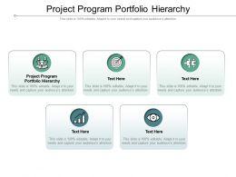 Project Program Portfolio Hierarchy Ppt Powerpoint Presentation Model Pictures Cpb