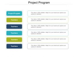 Project Program Ppt Powerpoint Presentation Slides Format Cpb