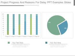 Project Progress And Reasons For Delay Ppt Examples Slides