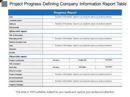 Project Progress Defining Company Information Report Table