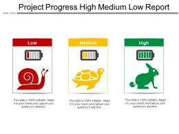 Project Progress High Medium Low Report