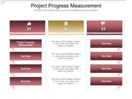 Project Progress Measurement Ppt Powerpoint Presentation Show Slide Portrait Cpb