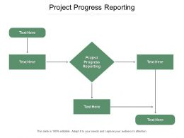 Project Progress Reporting Ppt Powerpoint Presentation Styles Ideas Cpb